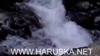Trabzon - Araklı Balahor Yaylası -Kuzu Gölleri Şelalesi(Kemençe)