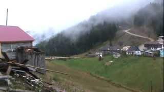 Trabzon,Erikbeli Yaylası
