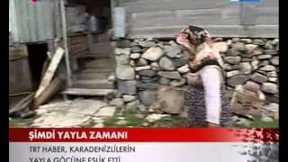 Karadenizlinin Yayla Göçü Serüveni TRT Haber'de.wmv
