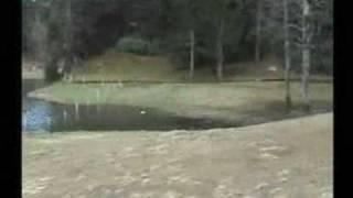 Hıdırnebi Yaylası-balıklı Göl TRABZON